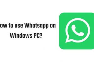 Whatsapp Download for PC-The-Android-Mania